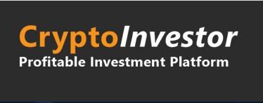 Crypto Investor trading